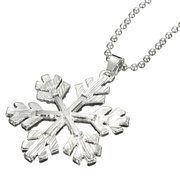 Crystal Frozen Snowflake Silver Long Necklace