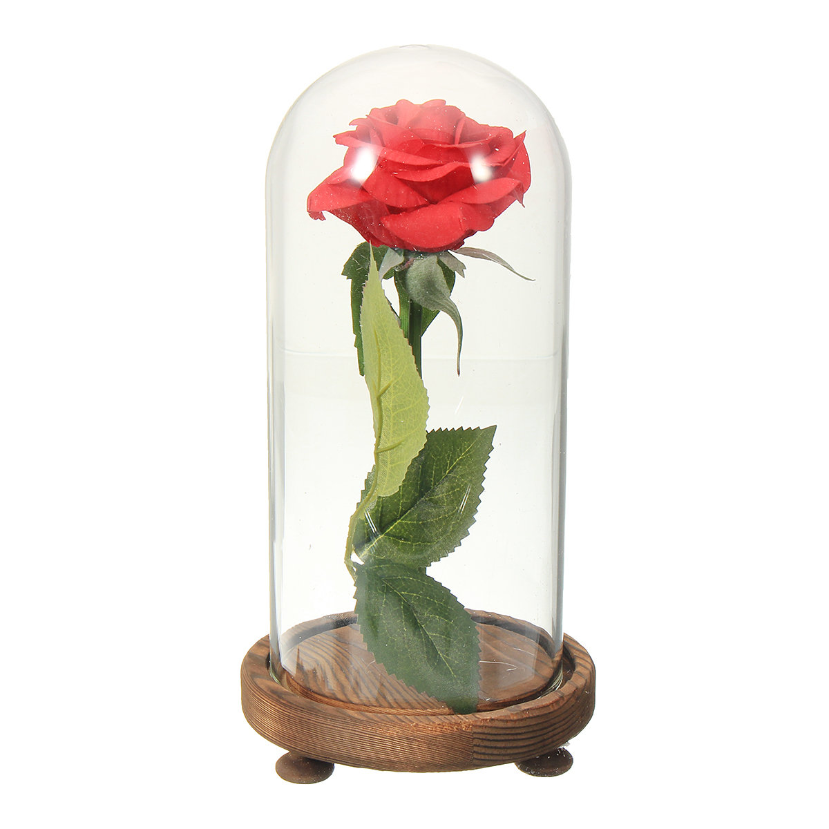 Beauty and the beast the little prince glass cover fresh preserved beauty and the beast the little prince glass cover fresh preserved flowers rose children toys izmirmasajfo