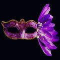 Masquerade Halloween Plumas de Navidad Máscaras pintadas